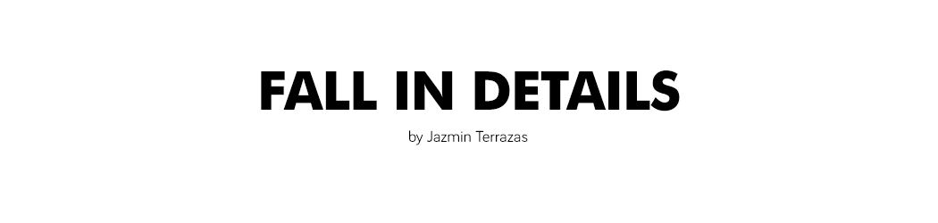 Fall in details | by Jazmin Terrazas - Fall in details